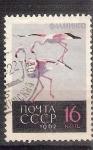 Sellos del Mundo : Europa : Rusia : pelicanos RESERVADO