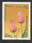 de Asia - Afganistán -  Yt1528 - Tulipan