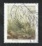 de Europa - Alemania -  3189 - Diversidad biológica