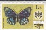 Sellos del Mundo : Asia : Bhután : mariposa