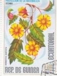 Stamps Equatorial Guinea -  flores- Hibbertia dentada