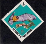Stamps Asia - Maldives -  Murcielago