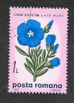 Stamps Romania -  2157 - Flores