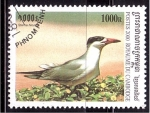Sellos de Asia - Camboya -  serie- Aves acuaticas