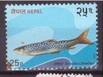 Stamps Nepal -  serie- Peces de Nepal