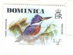 Sellos de America - Dominica -  Martín pescador RESERVADO