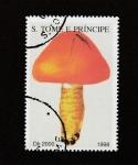 Stamps America - San Cristóbal Island -  Higróforo rojo