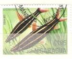 Sellos del Mundo : America : Nicaragua : anastomus anastomus RESERVADO