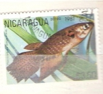 Sellos del Mundo : America : Nicaragua : pterolebas retculata RESERVADO