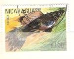 Sellos del Mundo : America : Nicaragua : poecilla reticulata RESERVADO