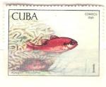 Sellos del Mundo : America : Cuba : apogon maculatus RESERVADO