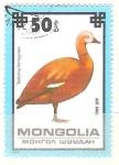 Sellos del Mundo : Asia : Mongolia : tadorna ferruginea RESERVADO