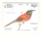 Sellos del Mundo : Asia : Camboya : merops nubiscus