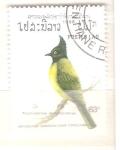 Sellos de Asia - Laos -  pycnonotus melanicterus