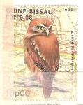 sello : Africa : Guinea_Bissau : glaucidium brasilianum