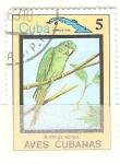 Sellos del Mundo : America : Cuba : aratinga euops