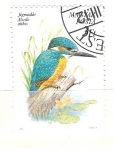 Stamps : Europe : Hungary :  alcedo athis RESERVADO
