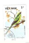 Stamps : Asia : Vietnam :  cissa chinensis RESERVADO