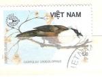 Stamps : Asia : Vietnam :  garrulux leucolophus RESERVADO