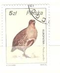 Stamps : Europe : Poland :  Perdix perdix RESERVADO