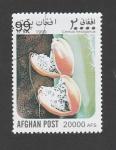 Stamps : Asia : Afghanistan :  Cereus hexagonus