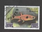 Stamps : Africa : Benin :  Rasbora maculata
