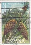 Sellos de Europa - España -  pino negral  (40)