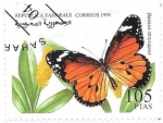 Sellos del Mundo : Africa : Marruecos : mariposas