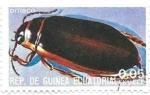 Sellos de Africa - Guinea Ecuatorial -  insecto