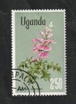 de Africa - Uganda -  93 - Flores