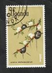 de Africa - Uganda -  91 - Flores