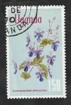 de Africa - Uganda -  92 - Flores