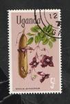 de Africa - Uganda -  94 - Flores