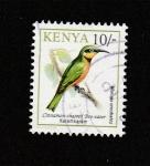 de Africa - Kenya -  Merops oreobates