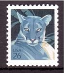 de America - Estados Unidos -  Puma