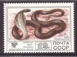 Stamps Russia -  serie- Fauna salvaje