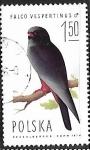 Sellos del Mundo : Europa : Polonia : Aves rapaces - Falco vespertinus