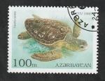 Sellos del Mundo : Asia : Azerbaiyán : 216 - Tortuga