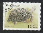 Stamps : Asia : Azerbaijan :  217 - Tortuga