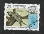 de Asia - Camboya -  1556 - Tortuga