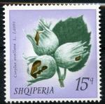 Sellos de Europa - Albania -  Frutas
