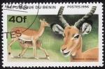Stamps Africa - Benin -  Impala