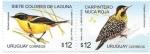 Sellos de America - Uruguay -  aves