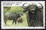 Stamps Africa - Benin -  Subespecie de Búffalo Africano