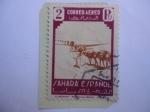 Sellos de Europa - España -  Ed:ES-SH 80 - El Desierto-Dromedario (Camelus dromedarius) España Colonias- Serie:Sahara Español.