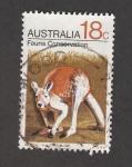 Stamps : Oceania : Australia :  Conservación de la fauna: Canguro
