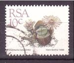 Stamps South Africa -  serie- Plantas de hojas carnosas