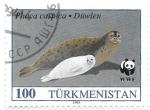 Sellos del Mundo : Asia : Turkmenistán :  focas