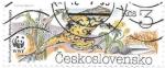 Sellos de Europa - Checoslovaquia -  ranas