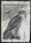 Sellos del Mundo : Europa : Rusia : Águila ratonera (Buteo buteo)  1965  1 kopek